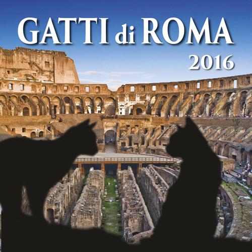 CM Gatti di Roma big - КотоРим