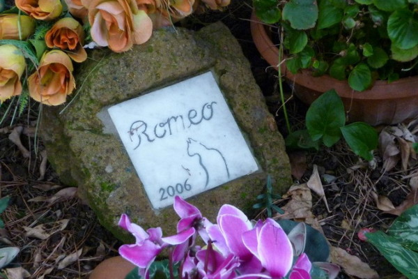 385526 10150516687601944 449991321 n 600x400 - Легенды исторического кладбища Тестаччо