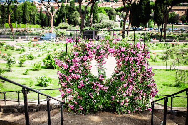 IMG 9057 copia - Сад роз на холме Авентин