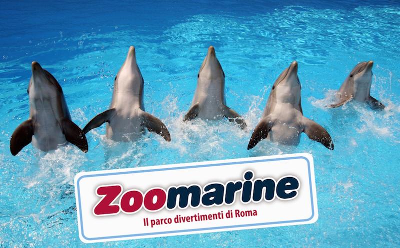 zoomarine 1 - Рим всей семьей: куда пойти с ребенком