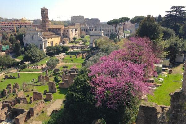 IMG 2321 600x400 - Рим - любовь с первого взгляда