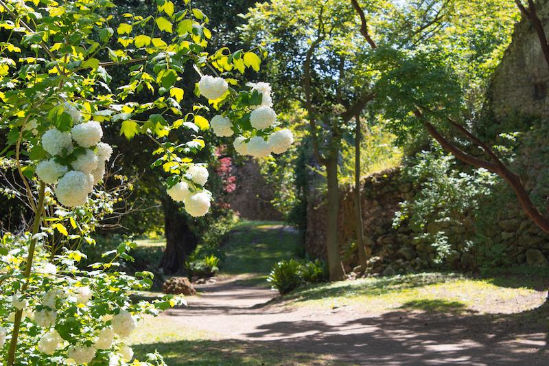 Copia di IMG 3263 - Сад Нимфы - сказка в окрестностях Рима