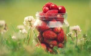 Copia di flowers and strawberries in jar 1280x8001 300x187 - Copia di flowers_and_strawberries_in_jar-1280x8001