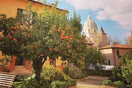 IMG 20180210 151627 269 1 e1538404270844 444x296 - Sognare Roma - Мечтать о Риме. Необычные экскурсии по Риму и окрестностям.