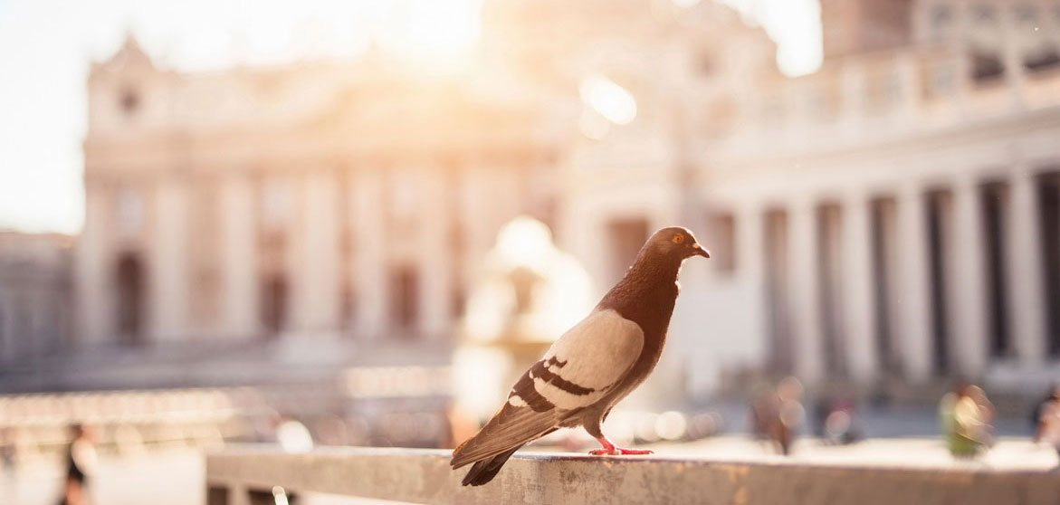 slider 1 - Sognare Roma - Мечтать о Риме. Необычные экскурсии по Риму и окрестностям.